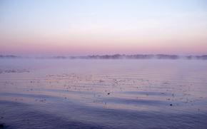 Картинка вода, гладь, река, рассвет, рыбалка, утро, дымка, тишь