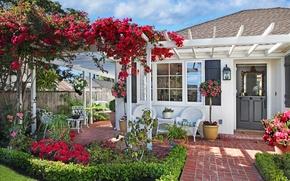 Картинка трава, цветы, дом, качели, газон, стулья, сад, бугенвиллия