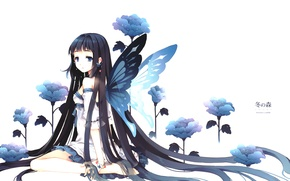 Картинка цветок, девушка, синий, бабочка, брюнетка, Girl, flower, длинные волосы, long hair, blue, butterfly, brunette