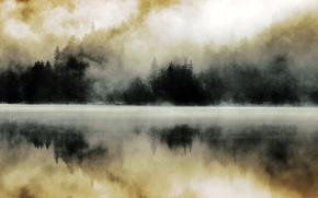 Картинка лес, туман, озеро, отражение