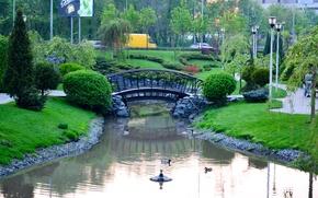 Картинка зелень, трава, макро, скамейка, природа, парк, фон, widescreen, обои, настроения, лавочка, дорожка, лавка, wallpaper, тропинка, …