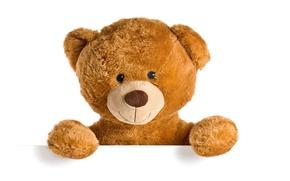 Картинка игрушка, мишка, плюшевый, toy, bear, cute, Teddy