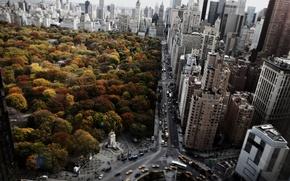 Картинка city, USA, sky, cars, trees, new york, clouds, amazing, steet