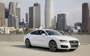 Картинка Concept, Audi, ауди, концепт, quattro