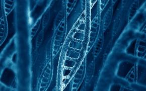 Картинка природа, ДНК, цепочка, молекула