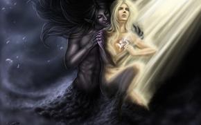 Картинка свет, фантастика, ангел, перья, демон, арт, черный туман