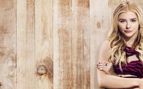 Картинка девушка, забор, блондинка, комедия, Хлоя Грейс Морец, Chloe Grace Moretz, Соседи, Sorority Rising, Neighbors 2, ...