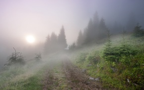Картинка пейзаж, туман, утро