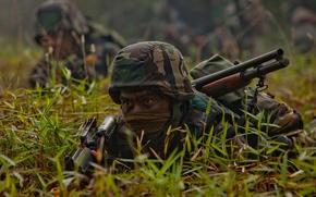Картинка трава, взгляд, оружие, солдат