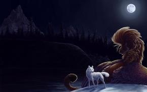 Обои луна, ночь, Волк