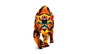 Картинка тигр, окрас, цветной, белый фон