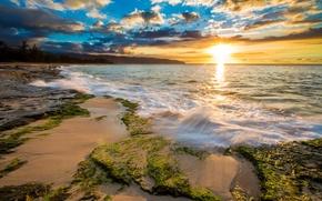 Картинка море, тропики, рассвет, побережье, Гавайи, США