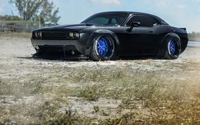 Картинка Dodge, Challenger, Black, SRT, Wheels, Strasse