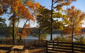 Картинка осень, деревья, озеро, Природа, беседка, trees, nature, autumn, lake, fall