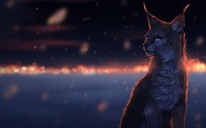Картинка глаза, усы, снег, снежинки, ночь, огни, темнота, шерсть, нос, уши, рысь, cat, art, snow, sorrow, …
