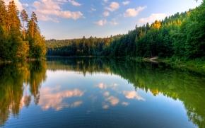 Обои озеро, вода, отражение, лес