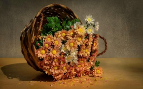Картинка вода, капли, цветы, корзина