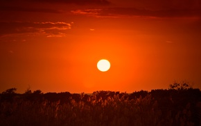Картинка солнце, закат, вечер