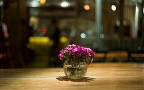 Картинка макро, цветы, блики, стол, лепестки, розовые, вазочка, Малиновые