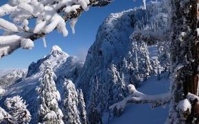 Картинка горы Норт-Шор, Британская Колумбия, North Shore Mountains, Vancouver, горы, зима, British Columbia, деревья, Canada, Ванкувер, ...