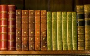 Обои корешки, книги, полка, библиотека