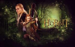 Картинка лес, эльфы, Legolas, лучники, Хоббит, The Hobbit, archer, elves, Mirkwood, Лихолесье, Мирквуд, Леголас, Tauriel, Хоббит: …