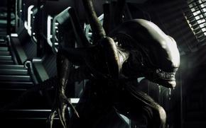 Картинка рендеринг, фон, монстр, Чужой, инопланетянин, Alien