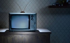 Обои усы, телевизор, таракан, антенны, тумбочка