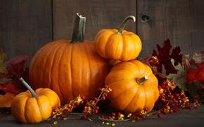 Картинка осень, урожай, тыква