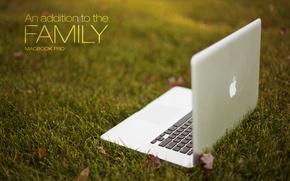 Картинка трава, Apple, ноутбук, MacBook Pro