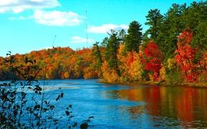 Обои холод, озеро, вода, осень