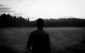 Картинка поле, лес, небо, туман, Парень
