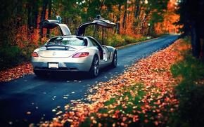 Картинка осень, листья, Mercedes-Benz, AMG, SLS, rear, silvery