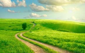 Картинка дорога, колея, зелень, поле, лучи солнца, небо, трава, облака