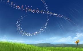 Картинка цветок, ветер, лепестки, Flower