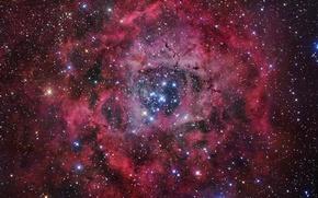 Обои Туманность, звезды, rosette nebula
