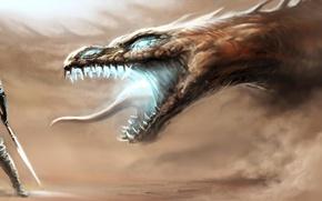 Картинка пустыня, дракон, чешуя, бой, воин, сражение, рыцарь, клык