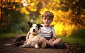 Картинка собака, мальчик, дружба, друзья, бордер-колли
