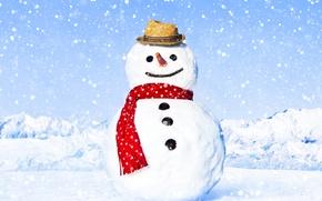 Обои снеговик, шляпа, снег, зима, снежинки, шарф, блики, пейзаж, морковь