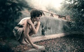Картинка листья, девушка, царапины, сидит, Survival