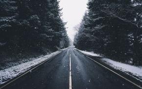 Картинка холод, дорога, лес, снег, деревья, Зима