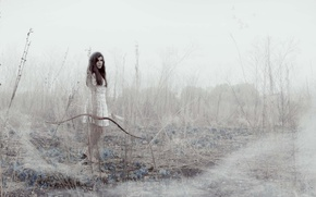 Картинка девушка, туман, лук