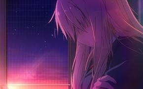 Картинка девушка, лучи, закат, одна, Sakurasou no Pet na Kanojo, Shiina Mashiro, волоссы, Кошечка из Сакурасо
