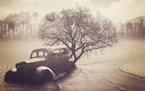 Картинка дорога, машина, дерево, Апокалипсис
