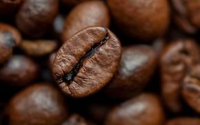 Картинка beans, coffee, roasted