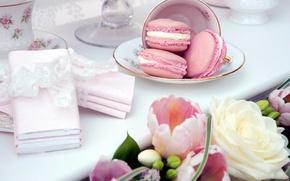 Картинка цветы, тарелка, чашка, Macaron