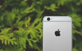 "Картинка Apple, Телефон, Hi-Tech, Iphone, Phone, ""Инновации"""