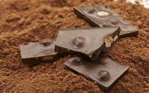 Обои десерт, dessert, сладкое, chocolate, nuts, орехи, sweet, шоколад, какао, 1920x1200, cocoa