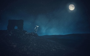 Картинка небо, звезды, горы, ночь, рендеринг, луна, волк, арт, руины, обои от lolita777