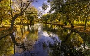 Картинка осень, деревья, парк, река, Англия, England, Barnsley, South Yorkshire, Южный Йоркшир, Барнсли, река Дерн, Locke …